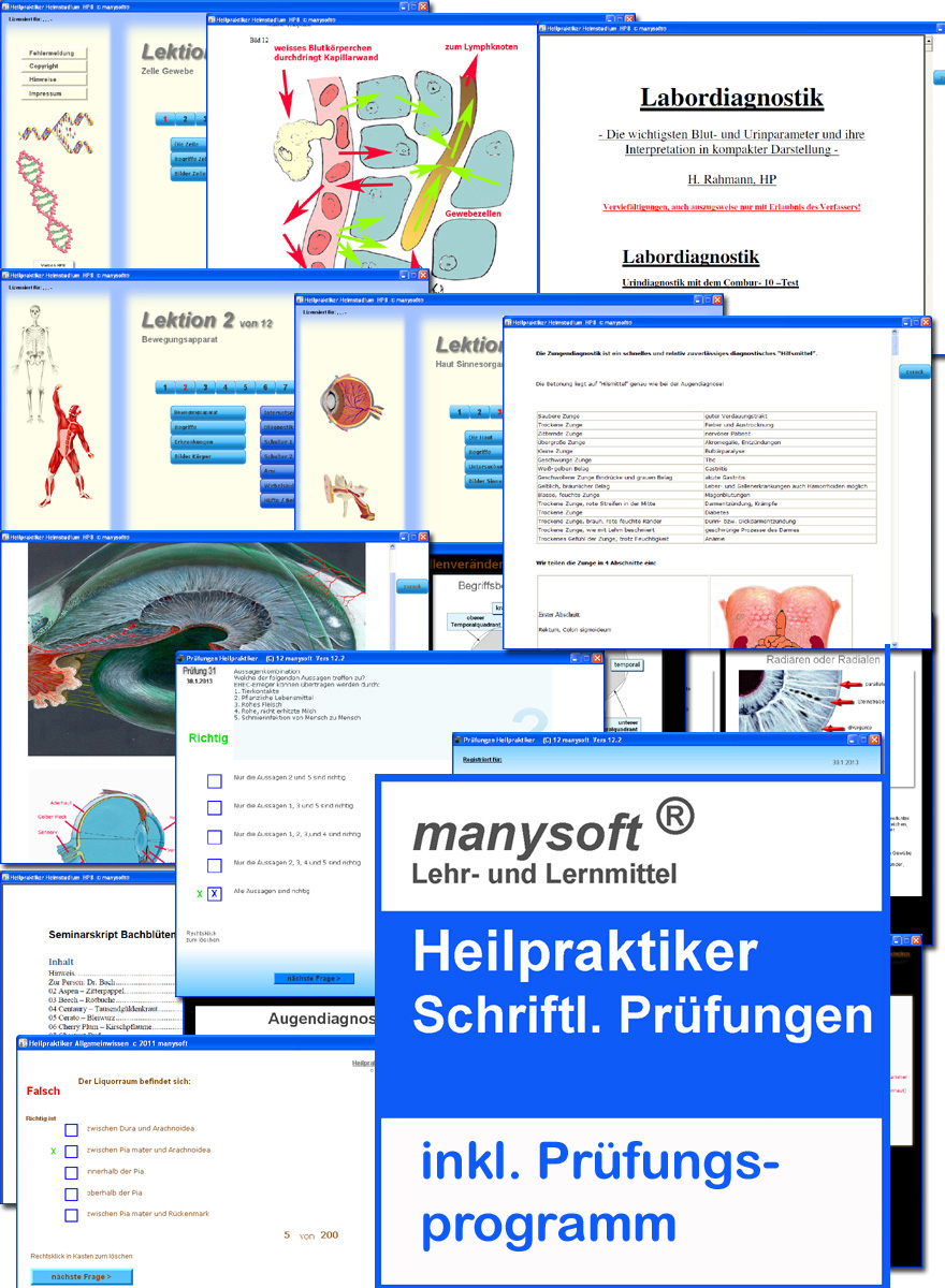 Atemberaubend Anatomie Und Physiologie Prüfung 2 Praxis Galerie ...